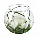 Test vase boule transparent