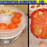 Test déshydrateur de fruits