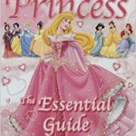 Guide d'achat disney princesse